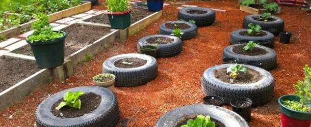 10 Weird Intensive Gardening Methods That Really Work
