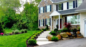 Choosing the Right Plants for Your Landscape