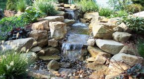 Reasons to Install a Water Feature