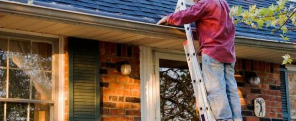 Include Your Roof in This Year's Spring Cleaning Activities