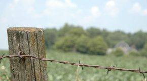 Why is the fence setting up service provider you choose so important?